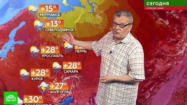 Прогноз погоды на 27 июля.лето, погода, прогноз погоды.НТВ.Ru: новости, видео, программы телеканала НТВ