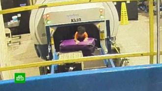 Двухлетний пассажир в Атланте едва не улетел под видом багажа