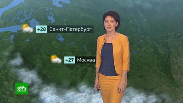 Утренний прогноз погоды на 26 июля.лето, погода, прогноз погоды.НТВ.Ru: новости, видео, программы телеканала НТВ