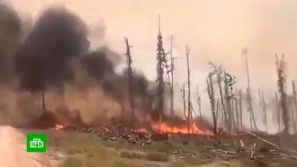 Втрех регионах Сибири ввели режим ЧС <nobr>из-за</nobr> лесных пожаров