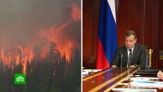 Медведев отправил главу Минприроды встрадающую от лесных пожаров Сибирь