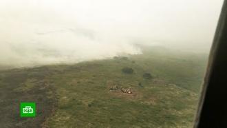Дым достиг Аляски: зона пожаров втайге уже равна площади Бельгии