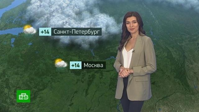 Утренний прогноз погоды на 30 июля.лето, погода, прогноз погоды.НТВ.Ru: новости, видео, программы телеканала НТВ