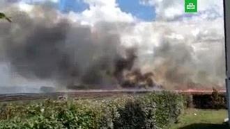 На юге Франции сгорело более 200 гектаров леса