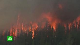 За сутки вРоссии возникло более 300очагов пожаров