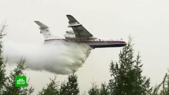 Минобороны бросает авиацию на тушение лесных пожаров