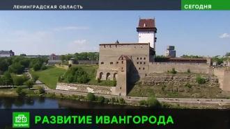 Приграничный Ивангород превратят в центр велосипедного каршеринга