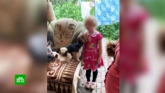 В Саратове шестилетняя девочка жила в захламленном доме с 25 собаками