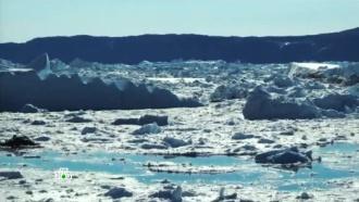 Тающие в Арктике льды угрожают затопить планету