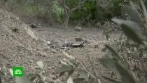 Обстрел родного села семьи Асада вМинобороны РФ назвали провокацией