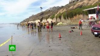 На пляже в Калифорнии упавшая скала убила трех отдыхающих