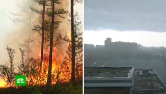 Жара, пожары и наводнения: можно ли повлиять на изменение климата