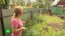 Долг перед мертвецом: в Челябинске покойник судится с соседкой из-за забора на участке