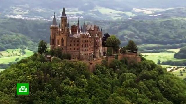 Исторический спор: в Германии развернулась борьба за наследство Гогенцоллернов.Германия, монархи и августейшие особы.НТВ.Ru: новости, видео, программы телеканала НТВ