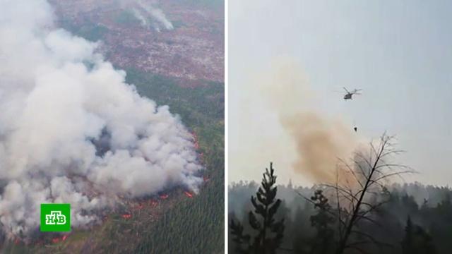 Авиация МЧС за сутки сбросила 900тонн воды на горящие леса вСибири.НТВ.Ru: новости, видео, программы телеканала НТВ