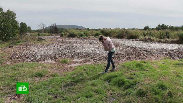 Жители поселков на Камчатке жалуются на невыносимый запах от рыбного завода.заводы и фабрики, Камчатка.НТВ.Ru: новости, видео, программы телеканала НТВ