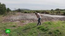 Жители поселков на Камчатке жалуются на невыносимый запах от рыбного завода