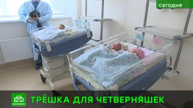 Питерские четверняшки из роддома поехали в новую квартиру.Санкт-Петербург, дети и подростки, младенцы, многодетные.НТВ.Ru: новости, видео, программы телеканала НТВ