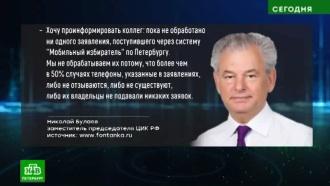 ЦИК призвал Петербург не устраивать дачного голосования