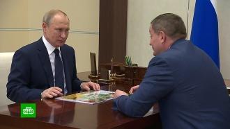 Волгоградский губернатор доложил Путину об оздоровлении Волги