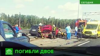 Незначительное ДТП спровоцировало смертельную аварию в Петербурге