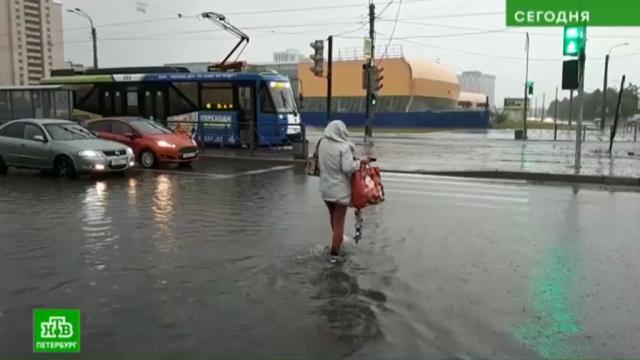 Какие районы Петербурга залило дождем больше всего.Санкт-Петербург, погода, соцсети.НТВ.Ru: новости, видео, программы телеканала НТВ
