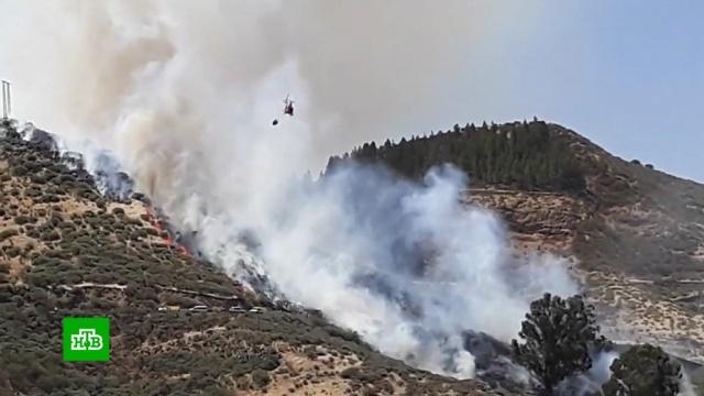 Горе-сварщик устроил мощный лесной пожар на Канарах.Канарские острова, лесные пожары.НТВ.Ru: новости, видео, программы телеканала НТВ
