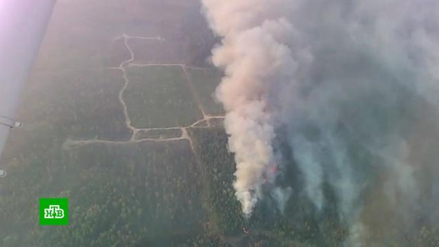 Площадь пожаров в Иркутской области за выходные выросла на 100 тыс. гектаров.Иркутская область, лесные пожары.НТВ.Ru: новости, видео, программы телеканала НТВ