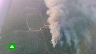Площадь пожаров в Иркутской области за выходные выросла на 100 тыс. гектаров