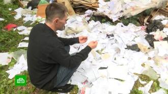 В уральском лесу нашли свалку с документами из уголовных дел