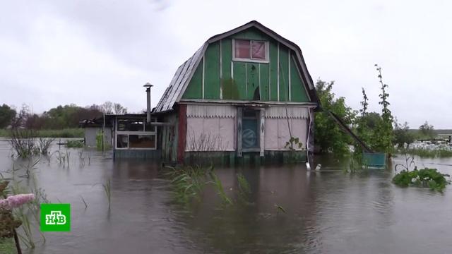 Хабаровск готовится к пику паводка: затоплены пригороды.Хабаровский край, наводнения.НТВ.Ru: новости, видео, программы телеканала НТВ