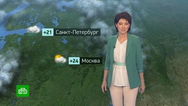 Утренний прогноз погоды на 14августа.погода, прогноз погоды.НТВ.Ru: новости, видео, программы телеканала НТВ