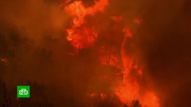 На греческом острове из-за лесного пожара эвакуировали монастырь.Греция, лесные пожары, пожары.НТВ.Ru: новости, видео, программы телеканала НТВ