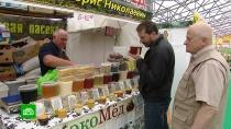 Россияне скупают мед <nobr>из-за</nobr> массовой гибели пчел