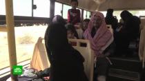 Лагерь Рукбан вСирии покинули 250беженцев