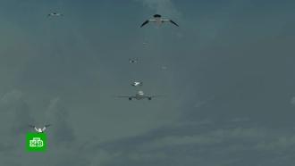 Аварийная посадка A321: попадание чаек вдвигатели сравнили сударом бомбы