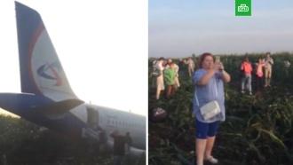 Десять человек пострадали при аварийной посадке Airbus А321