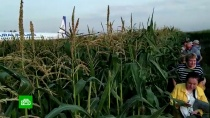 «Боялись, что взорвется самолет»: пассажиры А321рассказали, как пережили жесткую посадку