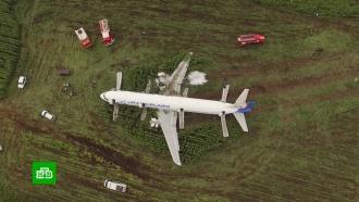 ВПодмосковье готовятся кразбору севшего вполе самолета