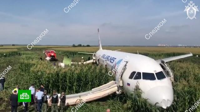 Специалисты Airbus осмотрели А321 в Подмосковье.авиационные катастрофы и происшествия, Московская область, самолеты.НТВ.Ru: новости, видео, программы телеканала НТВ