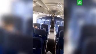 Видео из салона A321, совершившего аварийную посадку вПодмосковье