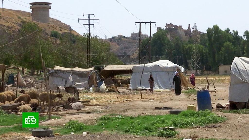 Беженцы из Хамы: жители палаточного городка в Сирии ждут возможности вернуться домой.беженцы, войны и вооруженные конфликты, Сирия.НТВ.Ru: новости, видео, программы телеканала НТВ