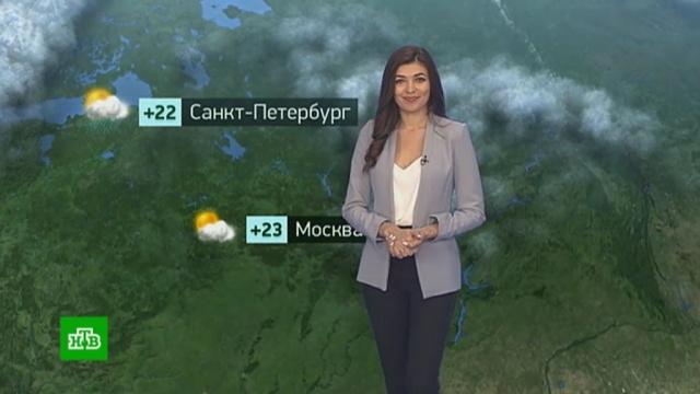 Утренний прогноз погоды на 19августа.погода, прогноз погоды.НТВ.Ru: новости, видео, программы телеканала НТВ