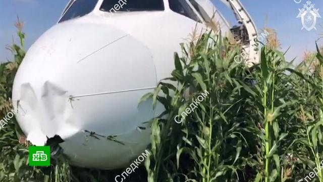 МАК обследовал черные ящики севшего вкукурузном поле A321.МАК, Московская область, авиационные катастрофы и происшествия, самолеты.НТВ.Ru: новости, видео, программы телеканала НТВ