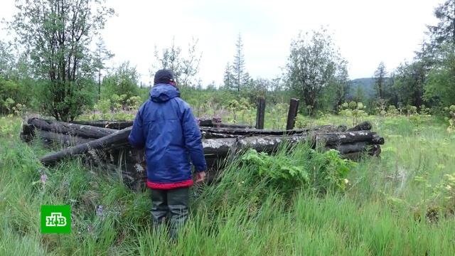В вымершем от оспы якутском городе поймали черных копателей.археология, болезни, задержание, Якутия.НТВ.Ru: новости, видео, программы телеканала НТВ