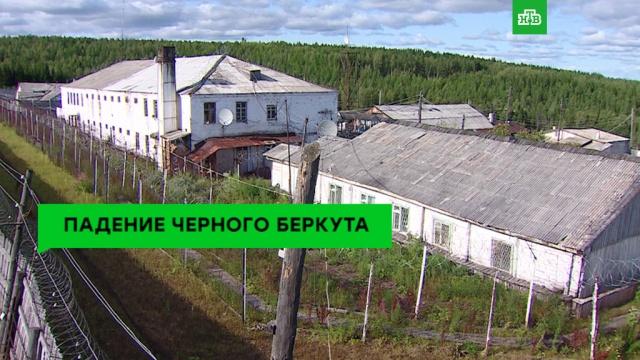 Политик-шалун: похождения Бориса Джонсона.НТВ.Ru: новости, видео, программы телеканала НТВ