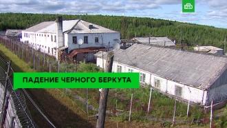 «Чёрный беркут»: история самой одиозной колонии России