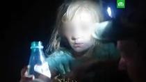 Пропавшую пятилетнюю Зарину нашли живой в лесу.Потерявшуюся в Нижегородской области девочку нашли живой на четвертые сутки. Малышку искали в лесу более тысячи человек.Нижний Новгород, дети и подростки, поисковые операции.НТВ.Ru: новости, видео, программы телеканала НТВ