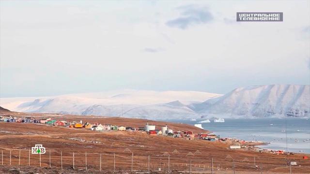 Мечты о Гренландии: почему США стремятся расширить присутствие в Арктике.Гренландия, Дания, США.НТВ.Ru: новости, видео, программы телеканала НТВ