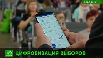 Петербуржцы смогут проголосовать за своего губернатора в Москве
